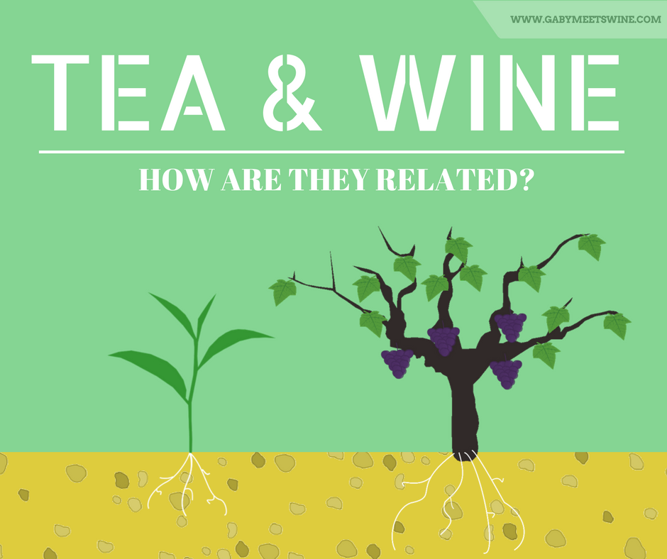 Tea and Wine…How are they related?